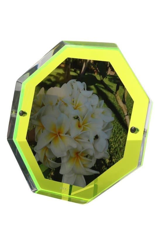 Alexandra Von Furstenberg Snap Bolt Picture Frame In Green