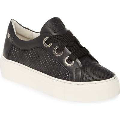 Agl Perforated Platform Sneaker