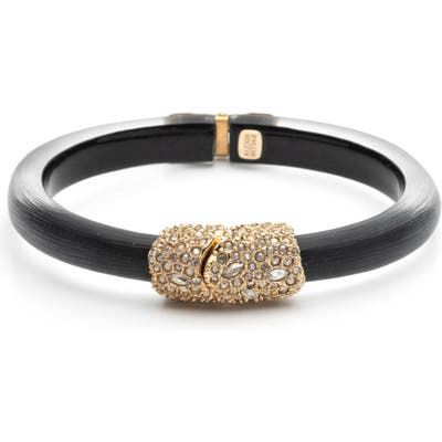 Alexis Bittar Crystal Encrusted Clasp Skinny Bangle