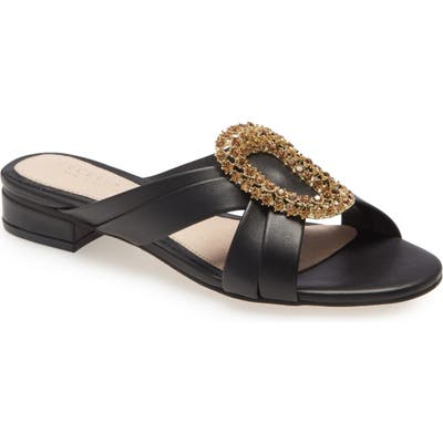 Cecelia New York Paradise Embellished Slide Sandal, Black