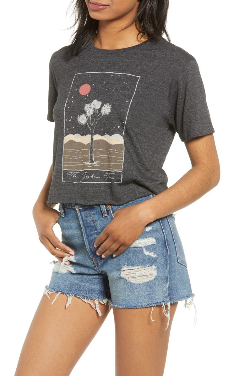 PST BY PROJECT SOCIAL T Joshua Tree Graphic Crop Tee, Main, color, 020