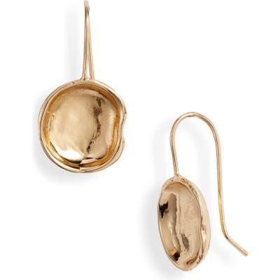 Argento Vivo Molten Drop Earrings
