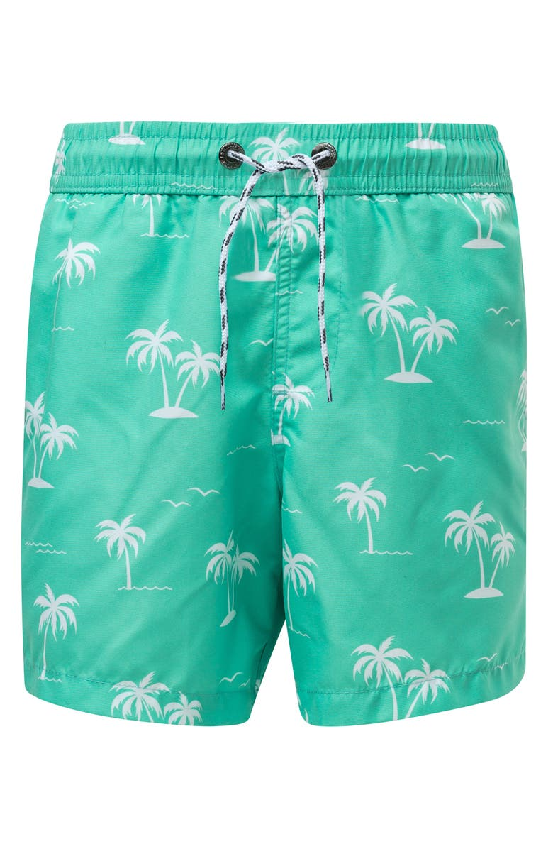 SNAPPER ROCK Morada Palm Swim Trunks, Main, color, LIGHT PASTEL GREEN