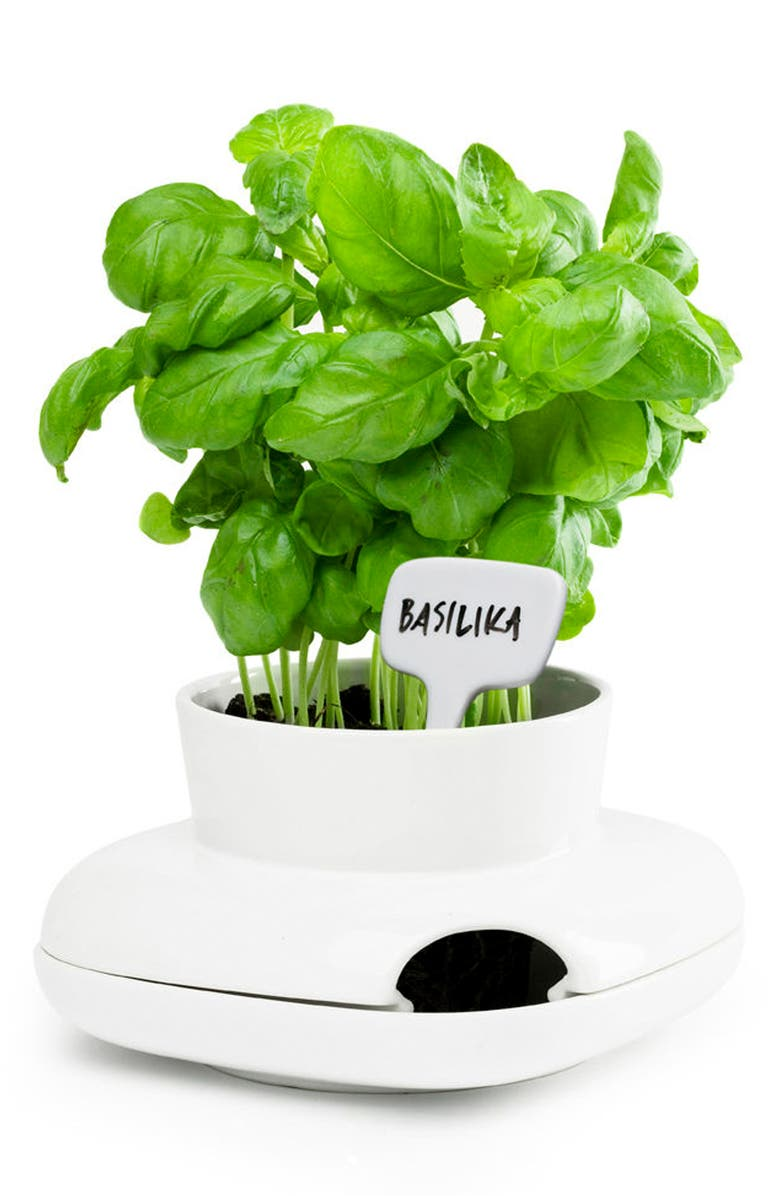 SAGAFORM Small Herb Pot, Main, color, WHITE