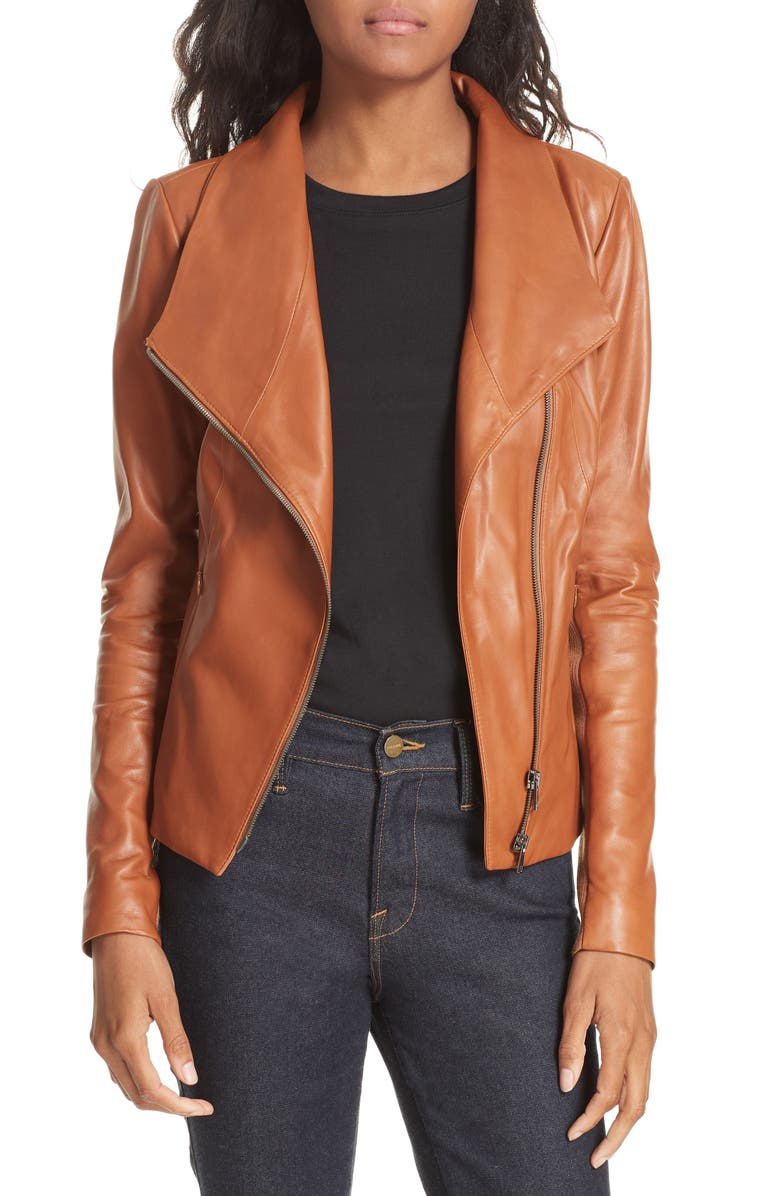 NORDSTROM SIGNATURE Stand Collar Leather Jacket, Main, color, 221