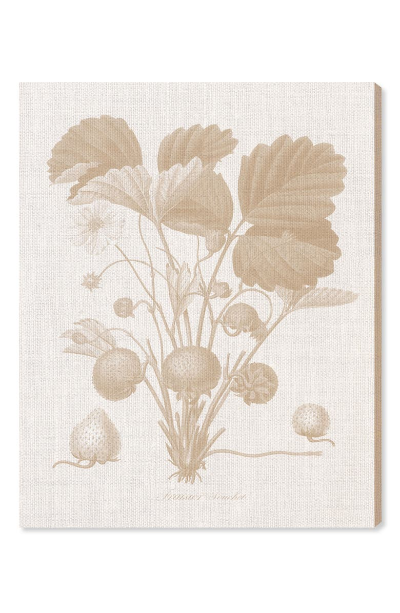 OLIVER GAL Fraisier II Canvas Wall Art, Main, color, WHITE