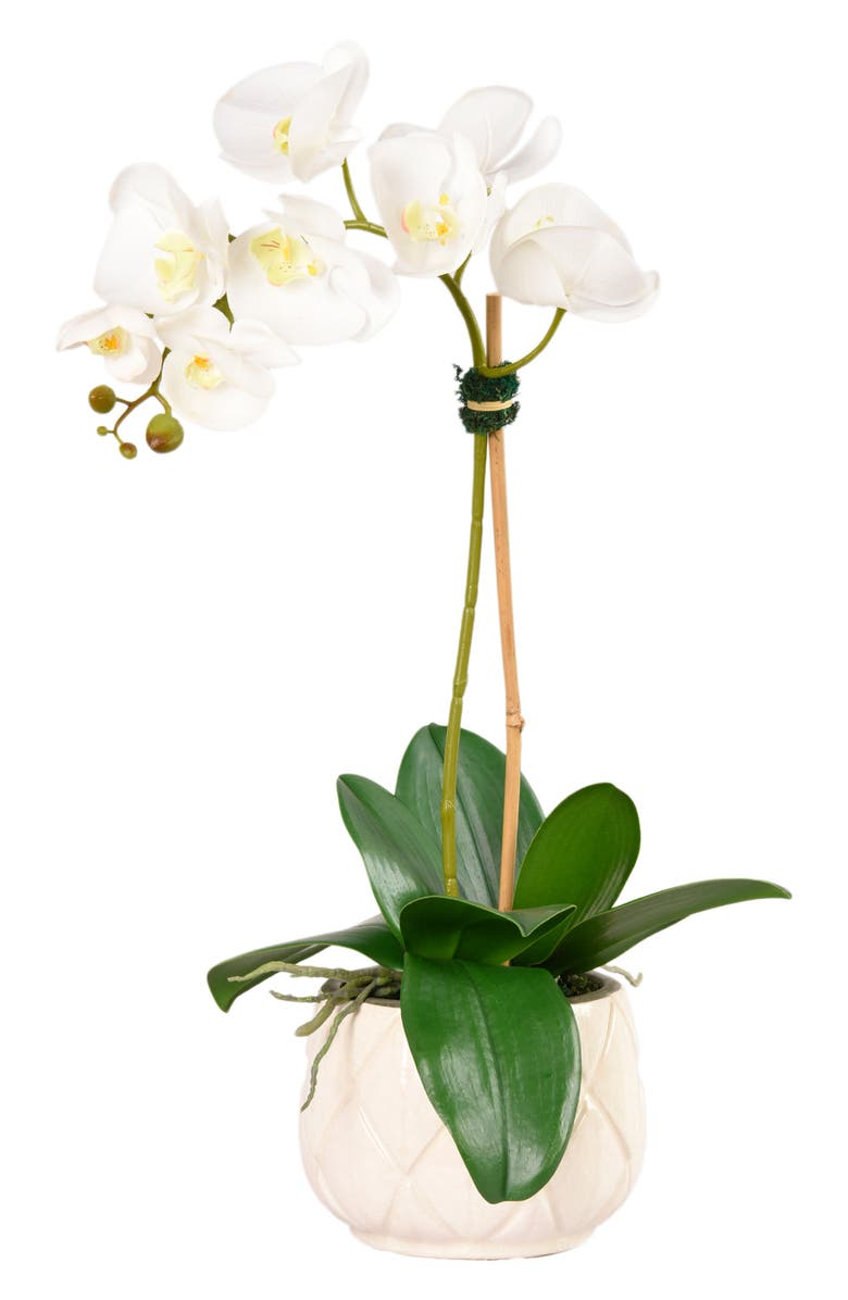 BLOOMR Stella Orchid Planter Decoration, Main, color, WHITE SMALL