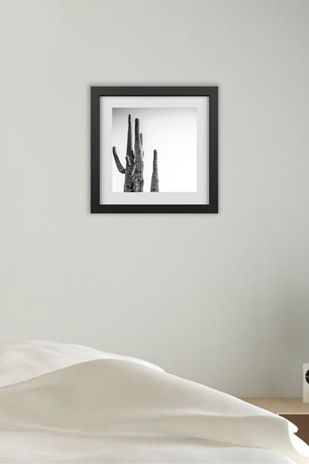 Image of PTM Images Desert Beauty Framed & Matted Giclee