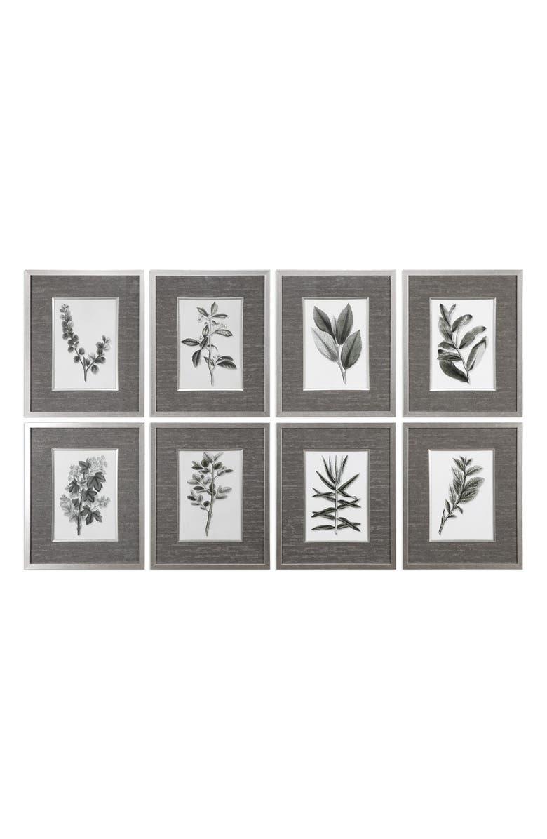UTTERMOST Sepia Grey Leaves Set of 8 Framed Art Prints, Main, color, BRONZE/ GREEN/ SILVER