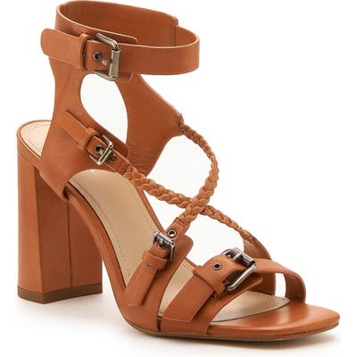 Botkier Rory Strappy Buckle Sandal, Brown