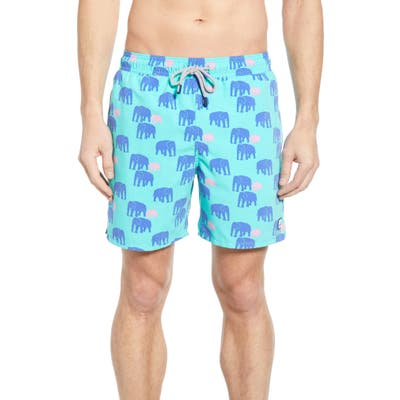 Tom & Teddy Elephant Print Swim Trunks, Green