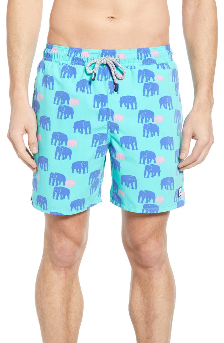TOM & TEDDY Elephant Print Swim Trunks, Main, color, SPEARMINT/ BLUE
