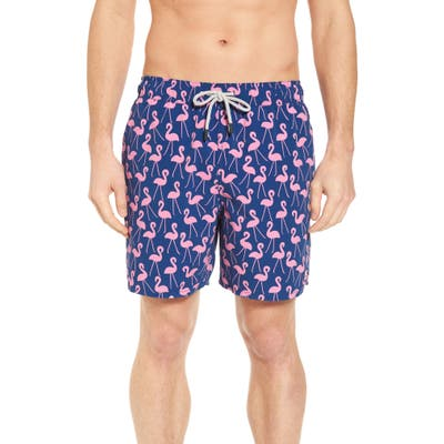 Tom & Teddy Flamingo Print Swim Trunks, Blue
