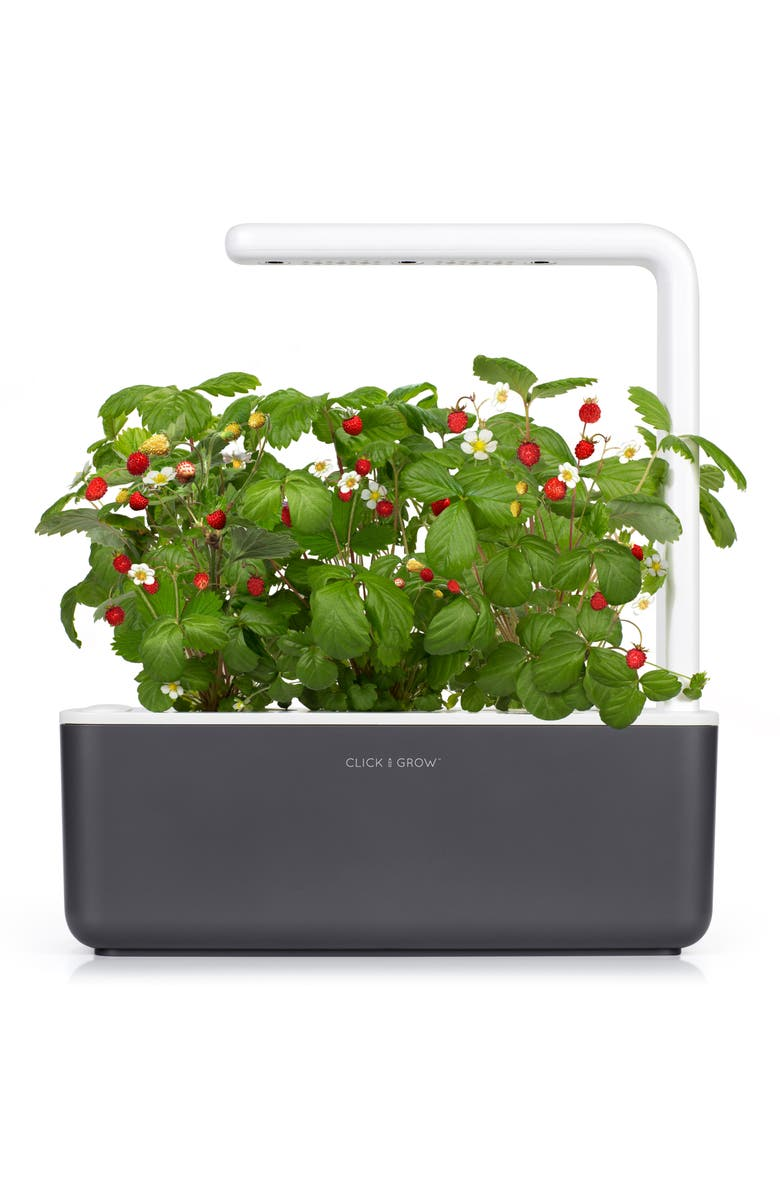 CLICK & GROW Smart Garden 3 Self Watering Indoor Garden, Main, color, GREY