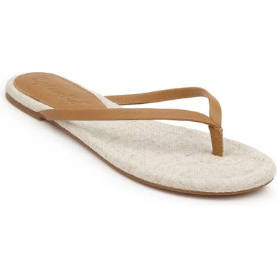 Splendid Ashlee Flip Flop, Brown