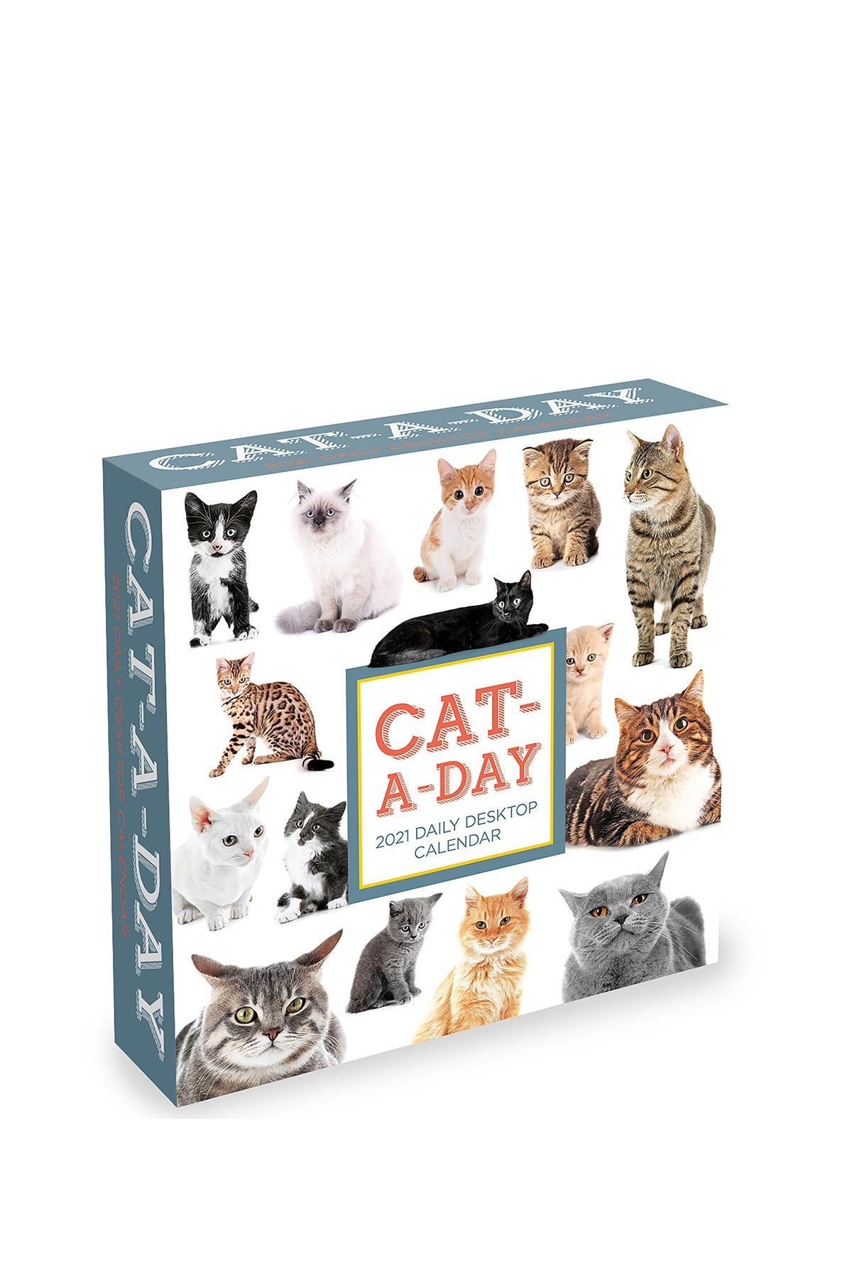 Image of TF Publishing 2021 Cat A Day Daily Desktop Calendar