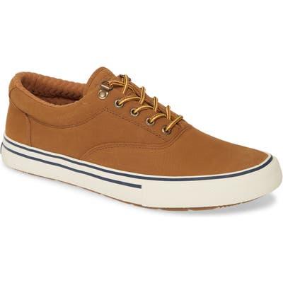 Sperry Striper Ii Storm Cvo Waterproof Sneaker, Brown
