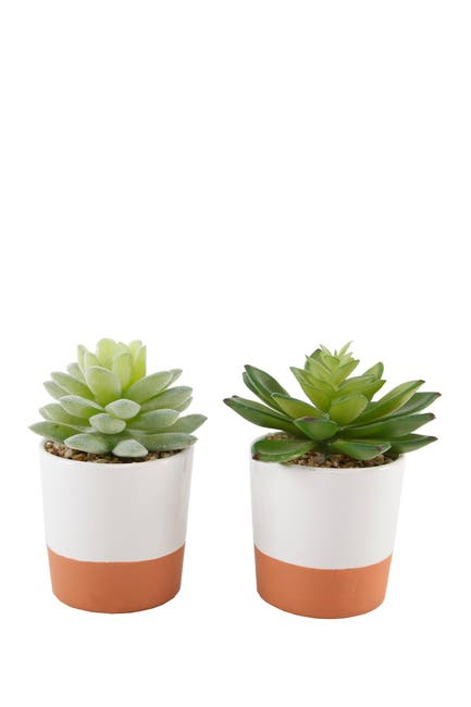 Image of FLORA BUNDA Orange/White Ceramic Faux Succulent Plant - Set of 2