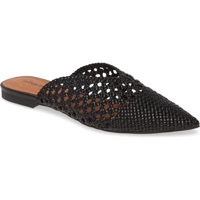 Jeffrey Campbell Leno Woven Pointed Toe Mule, Black