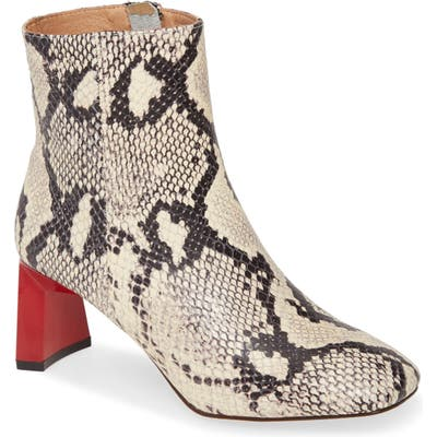 Jaggar Flair Bootie, Grey