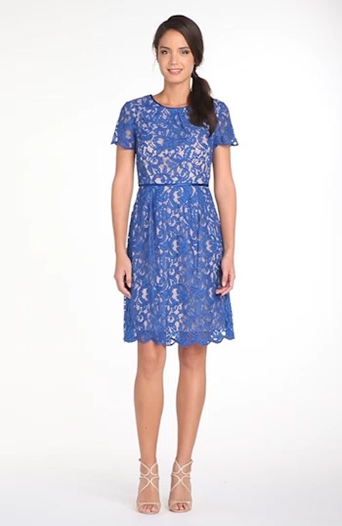 ,                             Scalloped Lace Dress,                             Alternate thumbnail 4, color,                             400