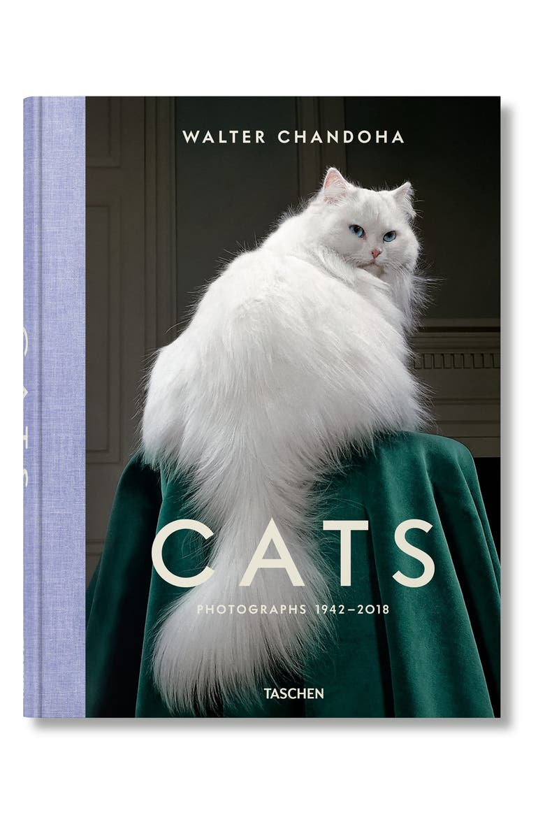 TASCHEN BOOKS 'Walter Chandoha Cats: Photographs 1942-2018' Book, Main, color, GREY