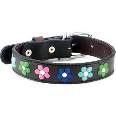 Georgie Paws Jeanne Leather Dog Collar, Brown