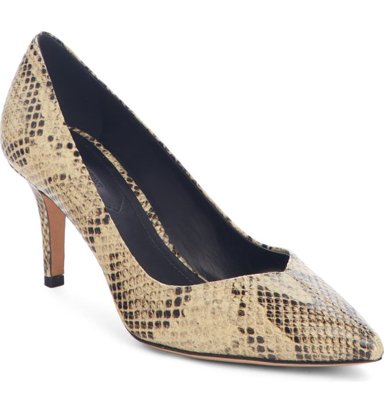 ISABEL MARANT Pully Pointy Toe Pump, Main, color, 251