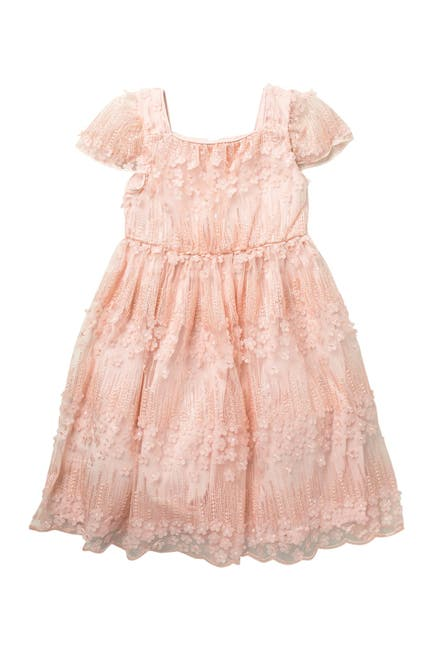 Image of Little Angels Cap Sleeve Embroidered Mesh Dress