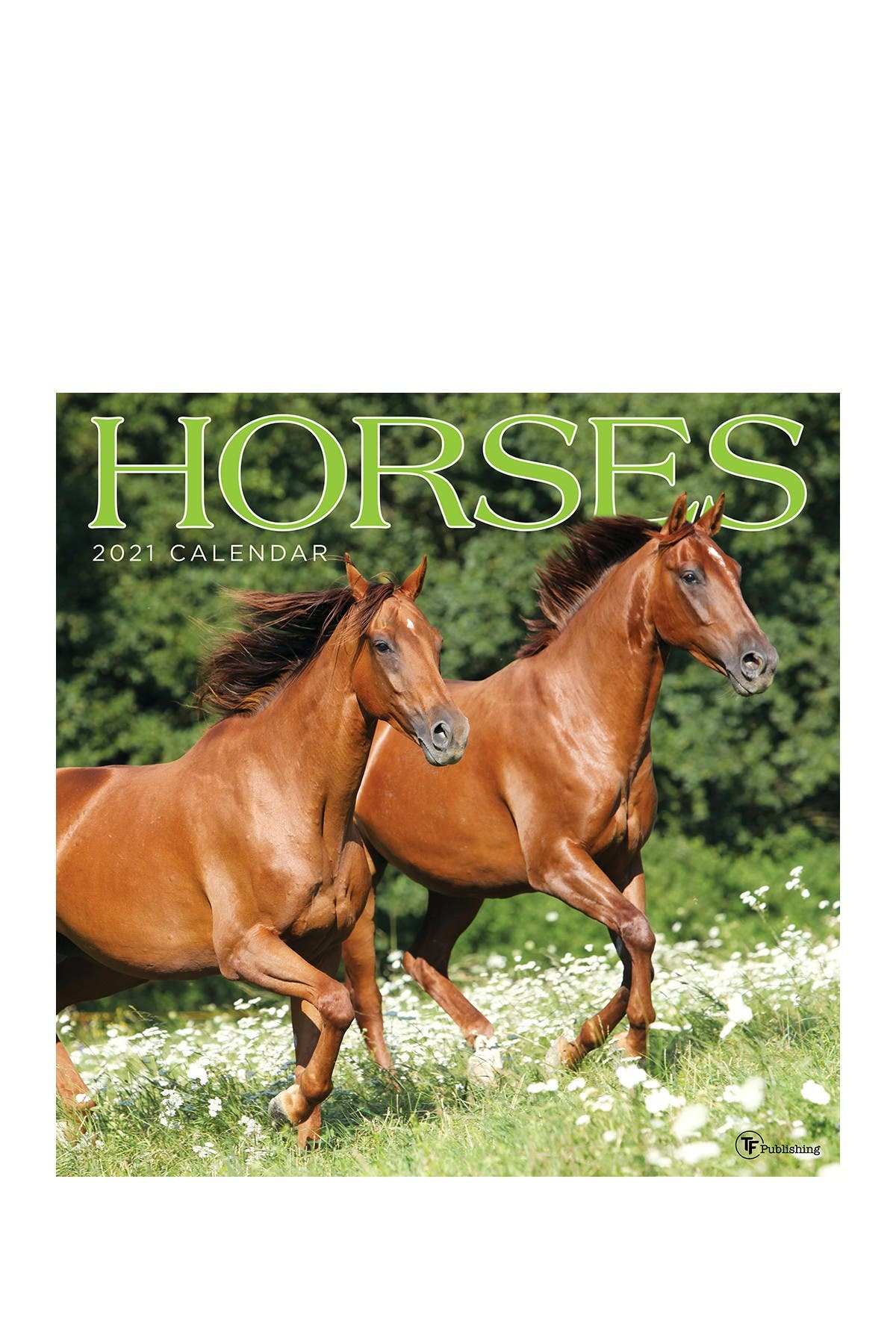 Image of TF Publishing 2021 Horses Wall Calendar