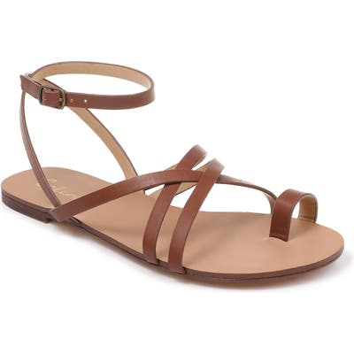 Splendid Sully Strappy Toe Loop Sandal- Brown