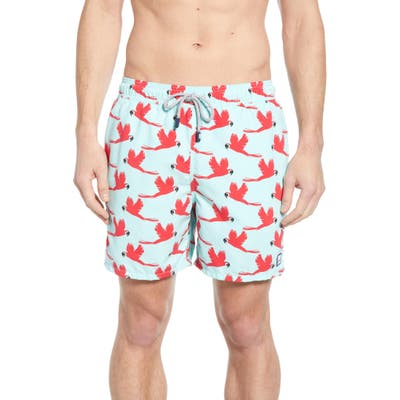 Tom & Teddy Parrot Print Swim Trunks, Blue