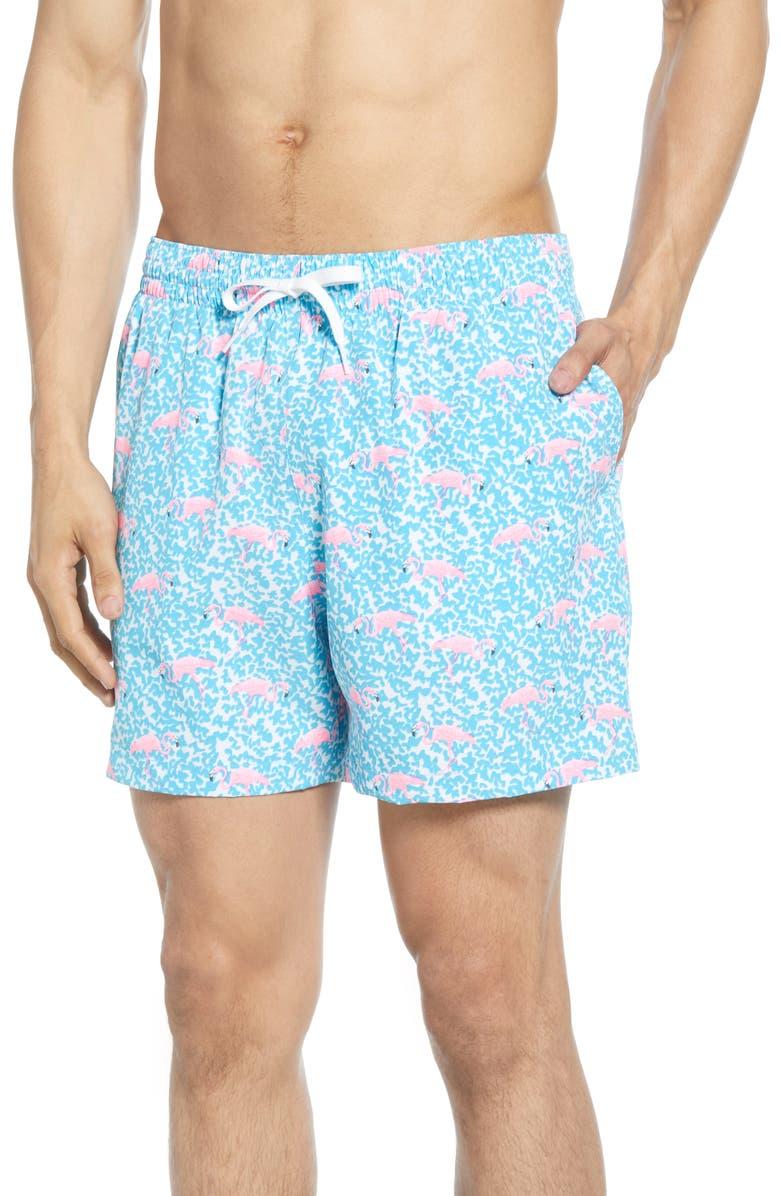 fe5ece701b Domingos Are for Flamingos Print Swim Trunks, Main, color, LIGHT BLUE  FLAMINGO
