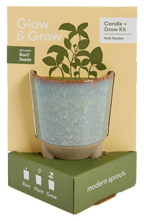 Indoor Gardening Kit Nordstrom, Modern Sprout Indoor Herb Garden Kit