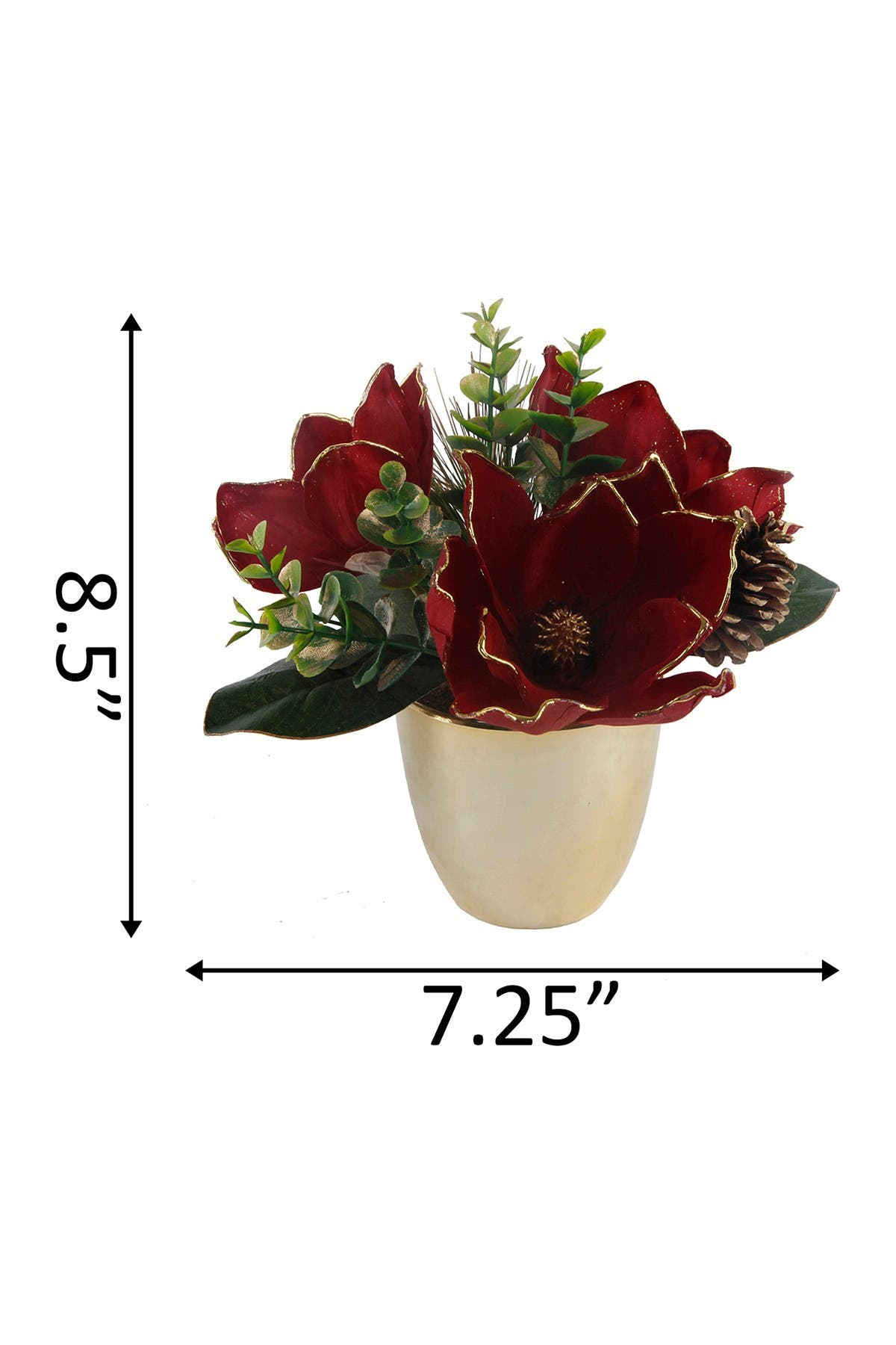 "Image of FLORA BUNDA 8.5"" Tall Burgundy Magnolia in Gold Pot"