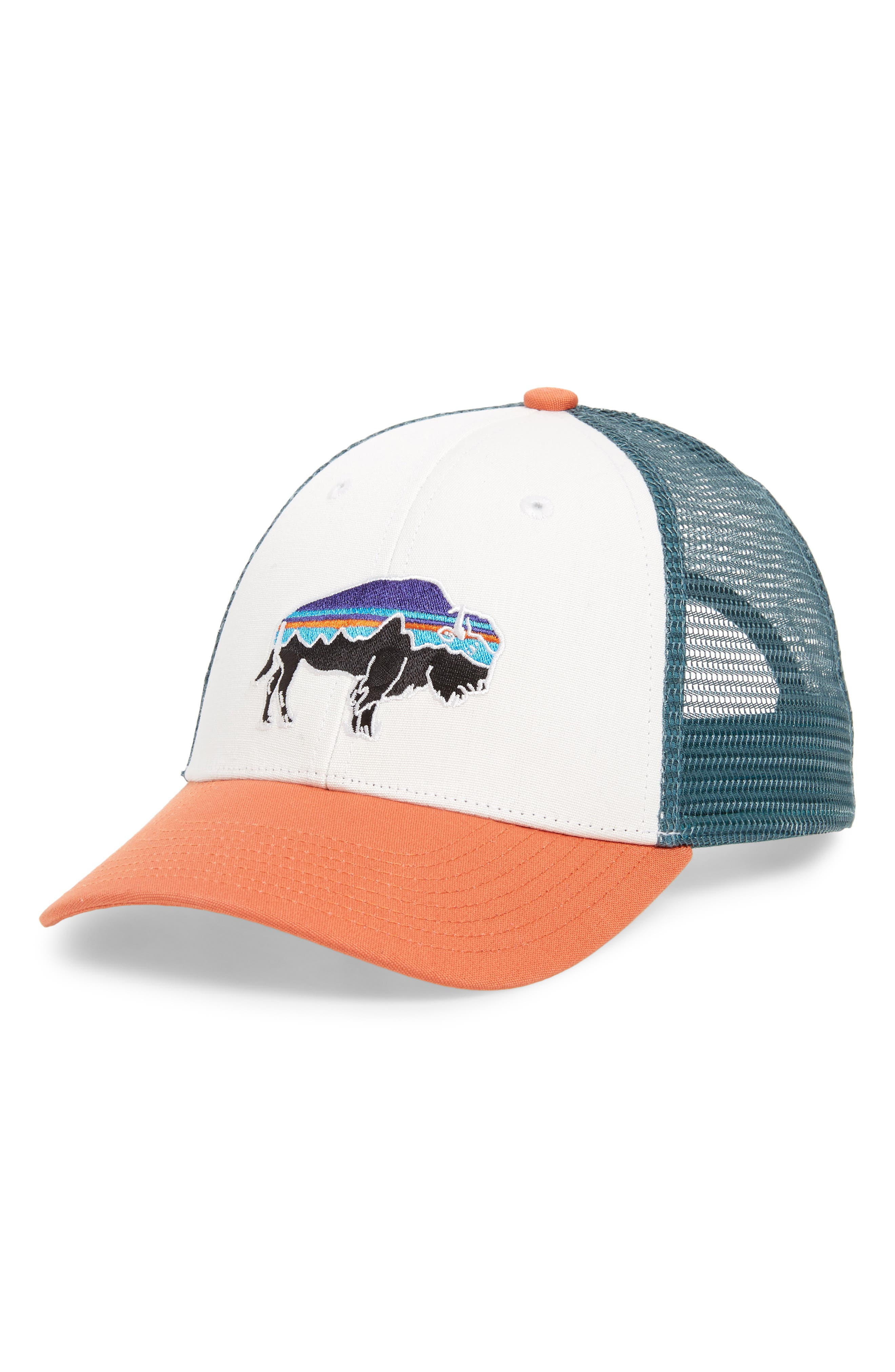 ,                             Fitz Roy Bison Trucker Hat,                             Main thumbnail 4, color,                             100