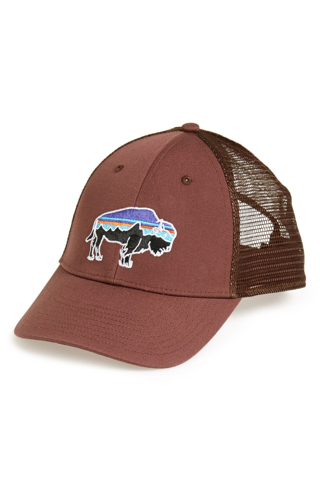 ,                             Fitz Roy Bison Trucker Hat,                             Main thumbnail 10, color,                             201