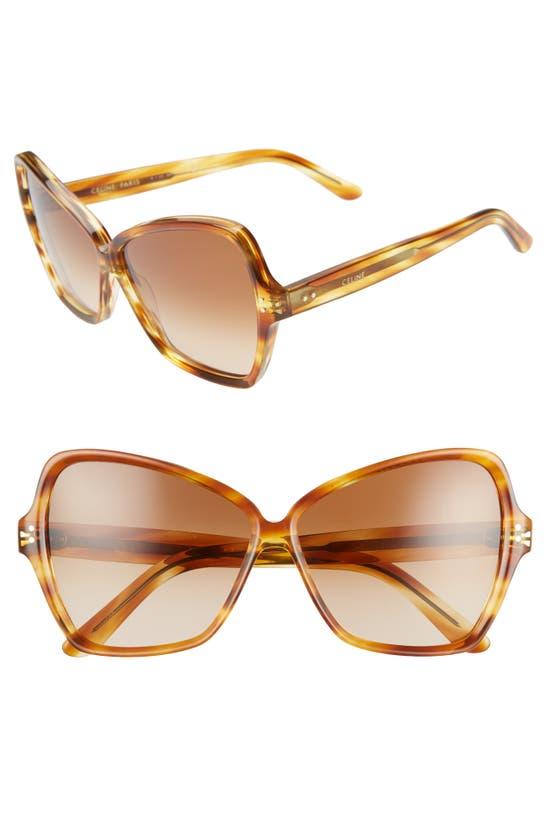 Celine 64mm Oversize Butterfly Sunglasses In Honey Flamed Havana/ Brown