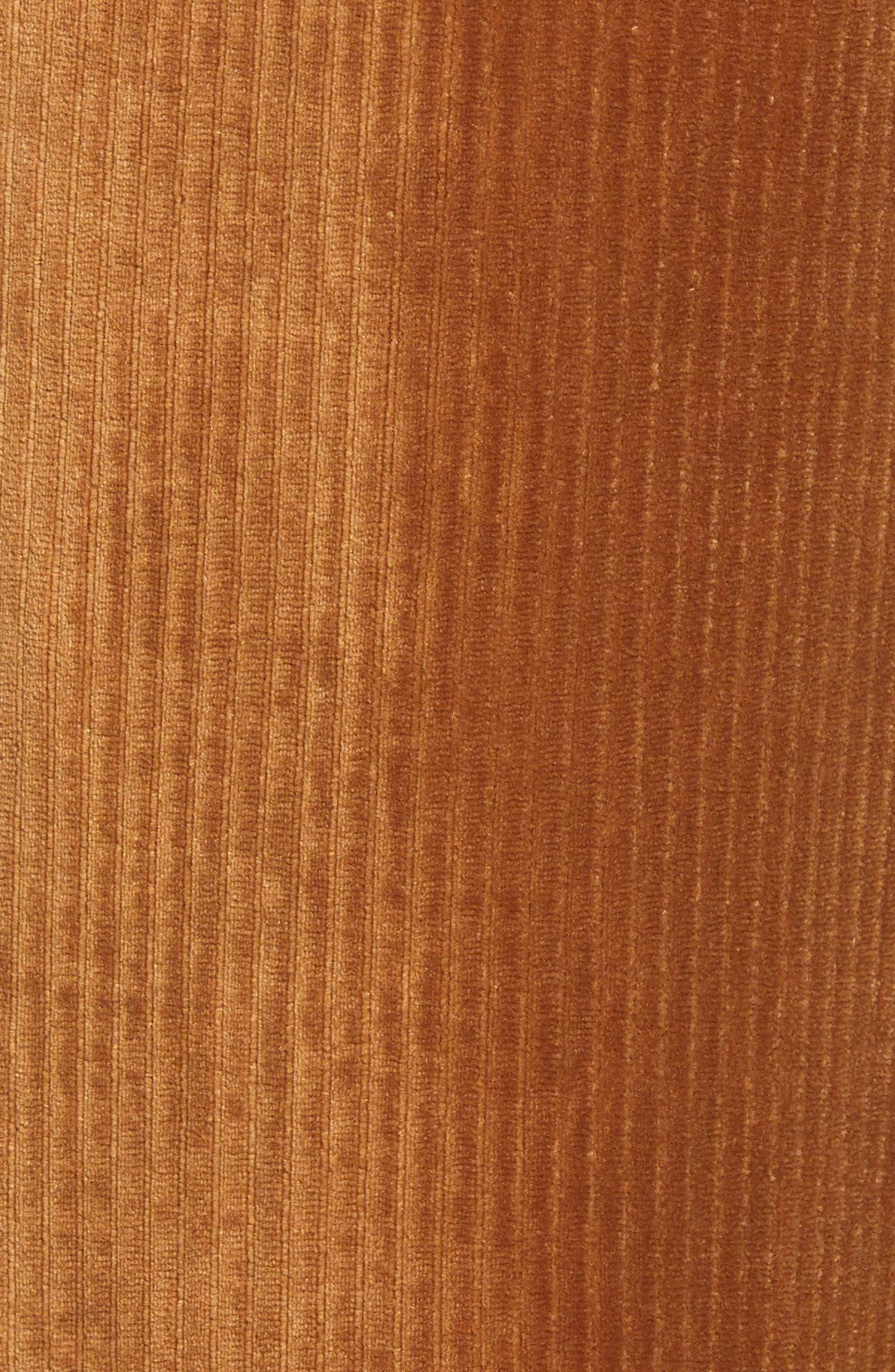 ,                             Velour Tie Waist Pants,                             Alternate thumbnail 5, color,                             200