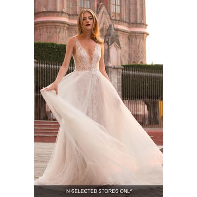 Watters Ludmila Silk Lace & Tulle A-Line Gown