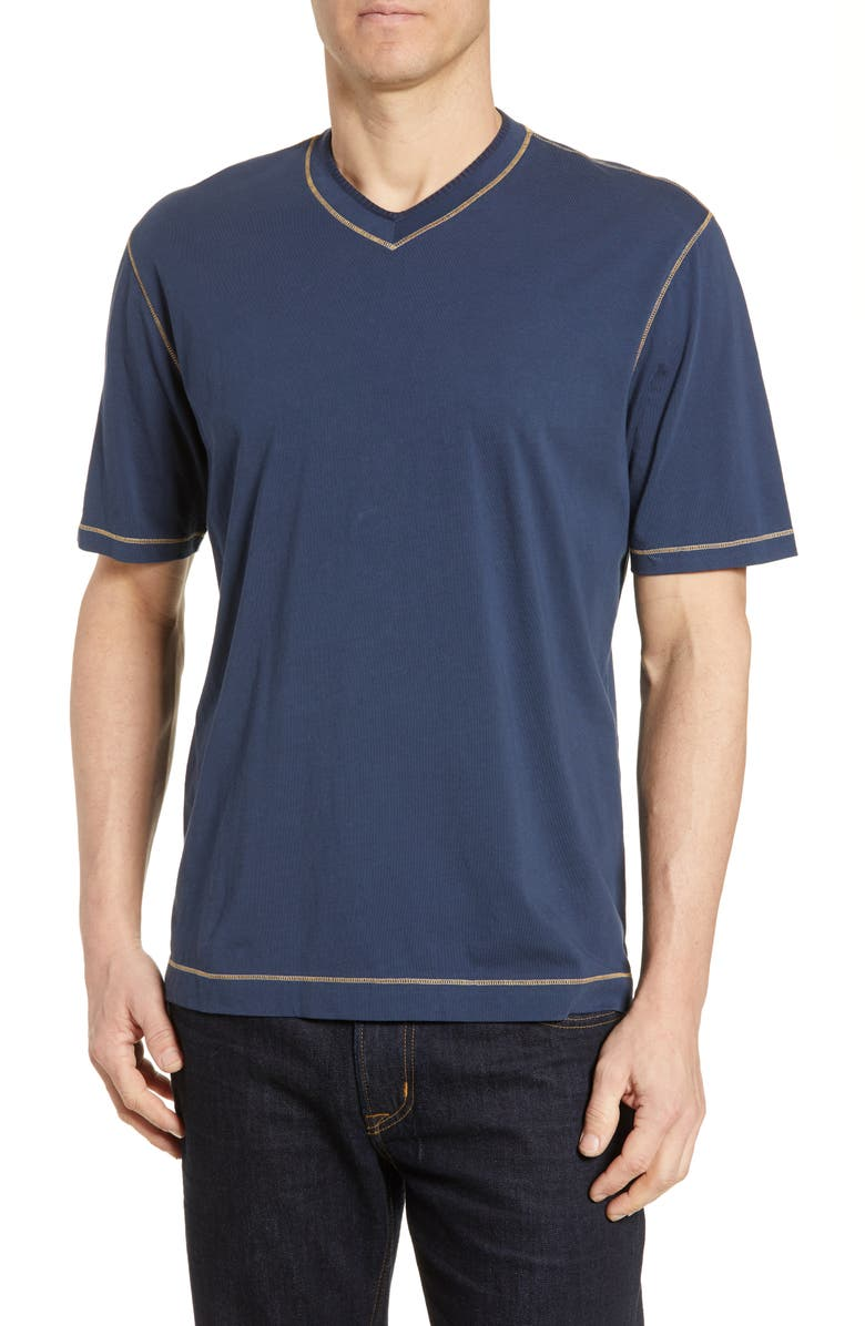 ROBERT GRAHAM Maxfield Tailored Fit V-Neck T-Shirt, Main, color, NAVY