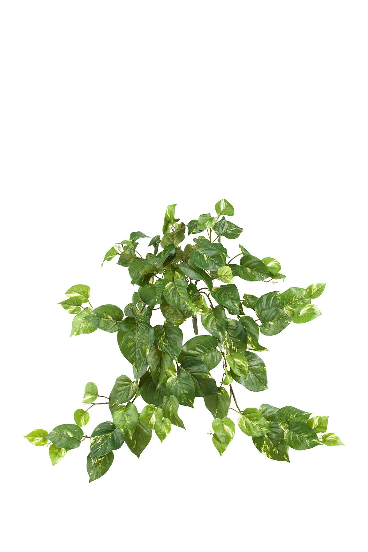 "Image of NEARLY NATURAL 30"" Pothos Hanging Bush - Set of 3"