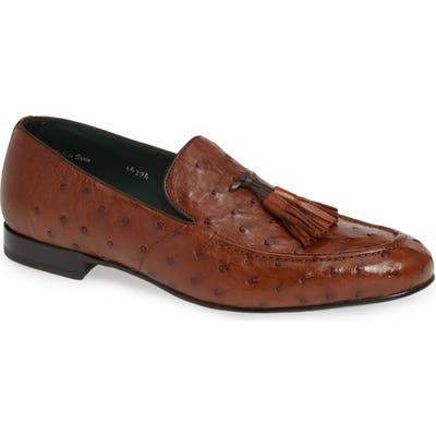 Mezlan Conte Tassel Ostrich Leather Loafer- Brown