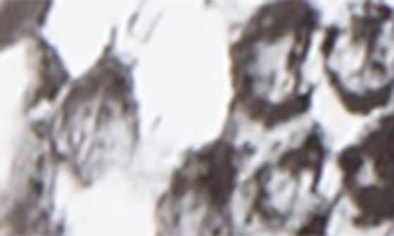 BRIGHT WHITE FABRIC