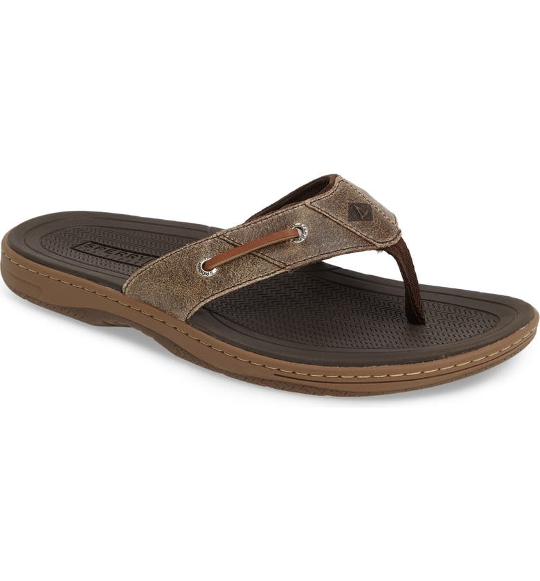 SPERRY 'Baitfish' Sandal, Main, color, BROWN/BROWN
