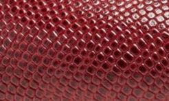 RED EMBOSSED LEATHER