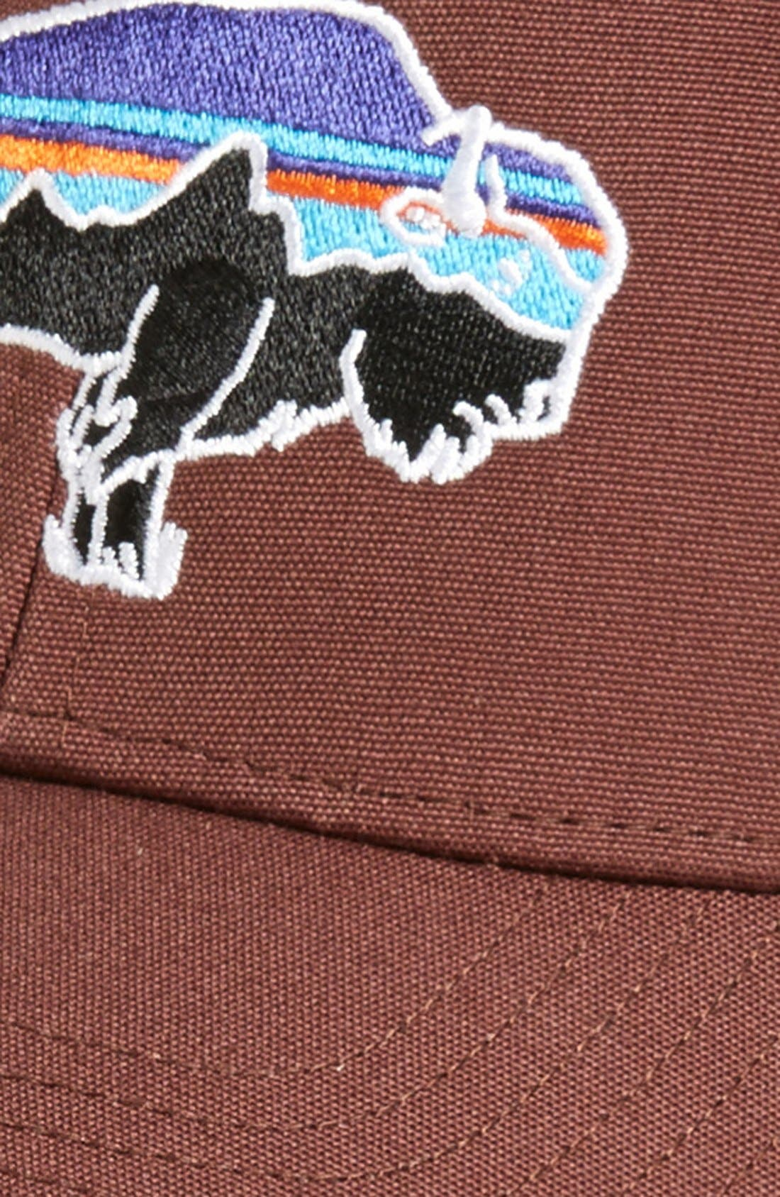 ,                             Fitz Roy Bison Trucker Hat,                             Alternate thumbnail 11, color,                             201