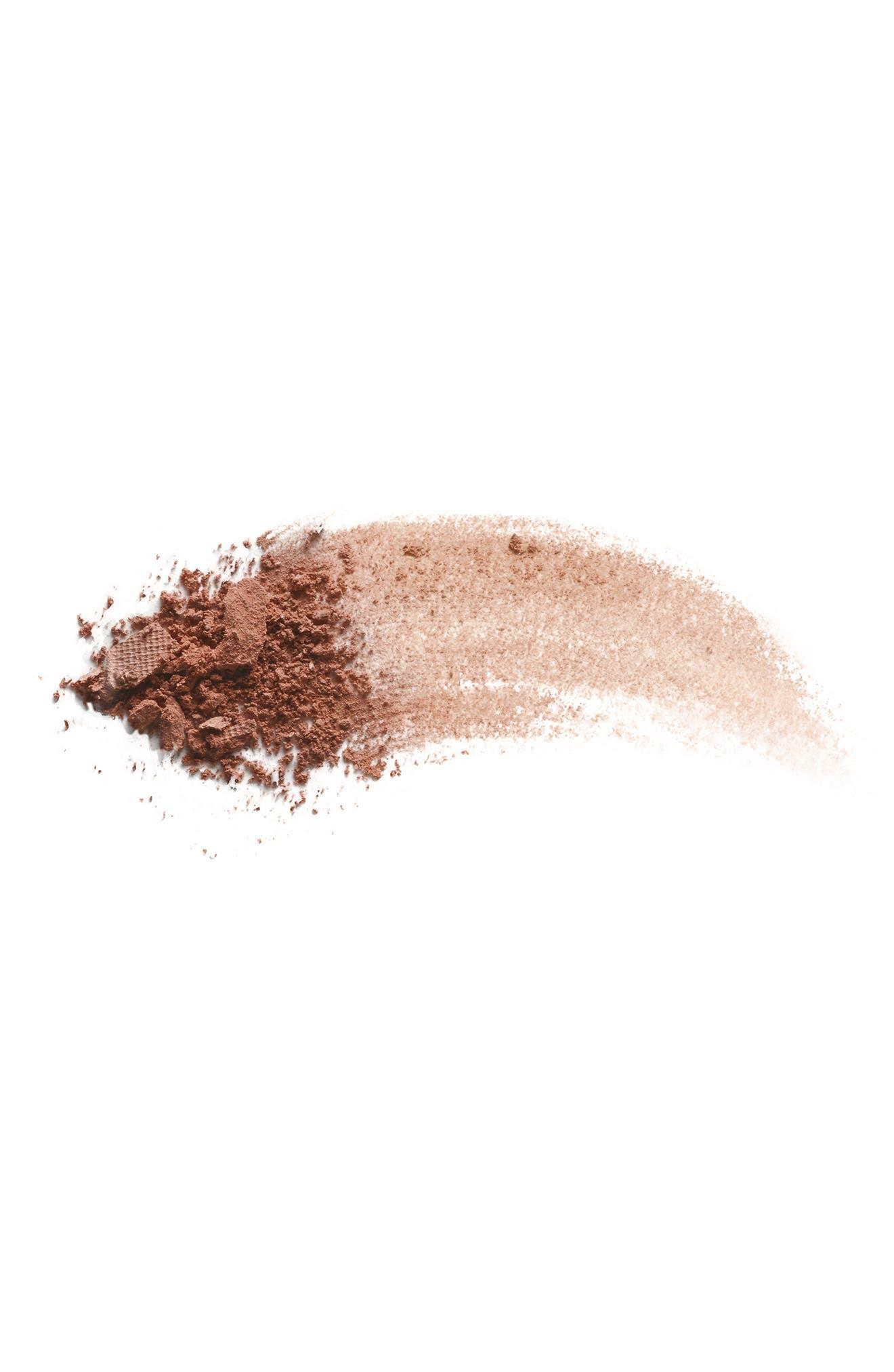 ,                             Bronzing Powder,                             Alternate thumbnail 3, color,                             CASINO