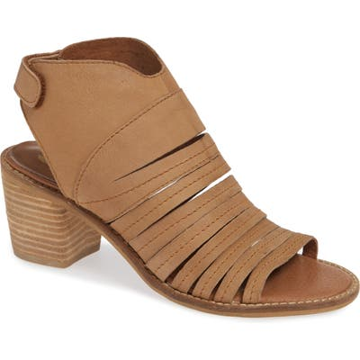 Sbicca Ainsworth Sandal, Brown