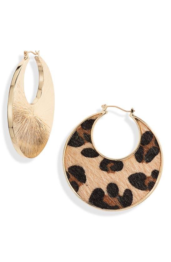 Stella & Ruby Genuine Calf Hair Hoop Earrings In Gold/ Leopard